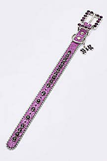 Crystal Bling Dog Collar