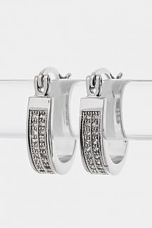2 Row Oval Hoop Earrings
